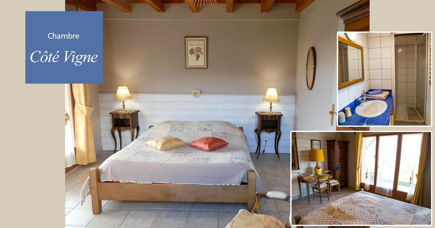 Vigne - Le Raisin Bleu - casa rural de vacaciones en Beaujolais